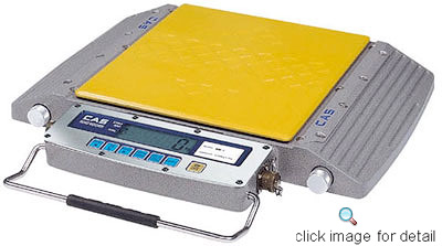 RW-S Wheel Weighing Scale